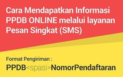 INFO SMS